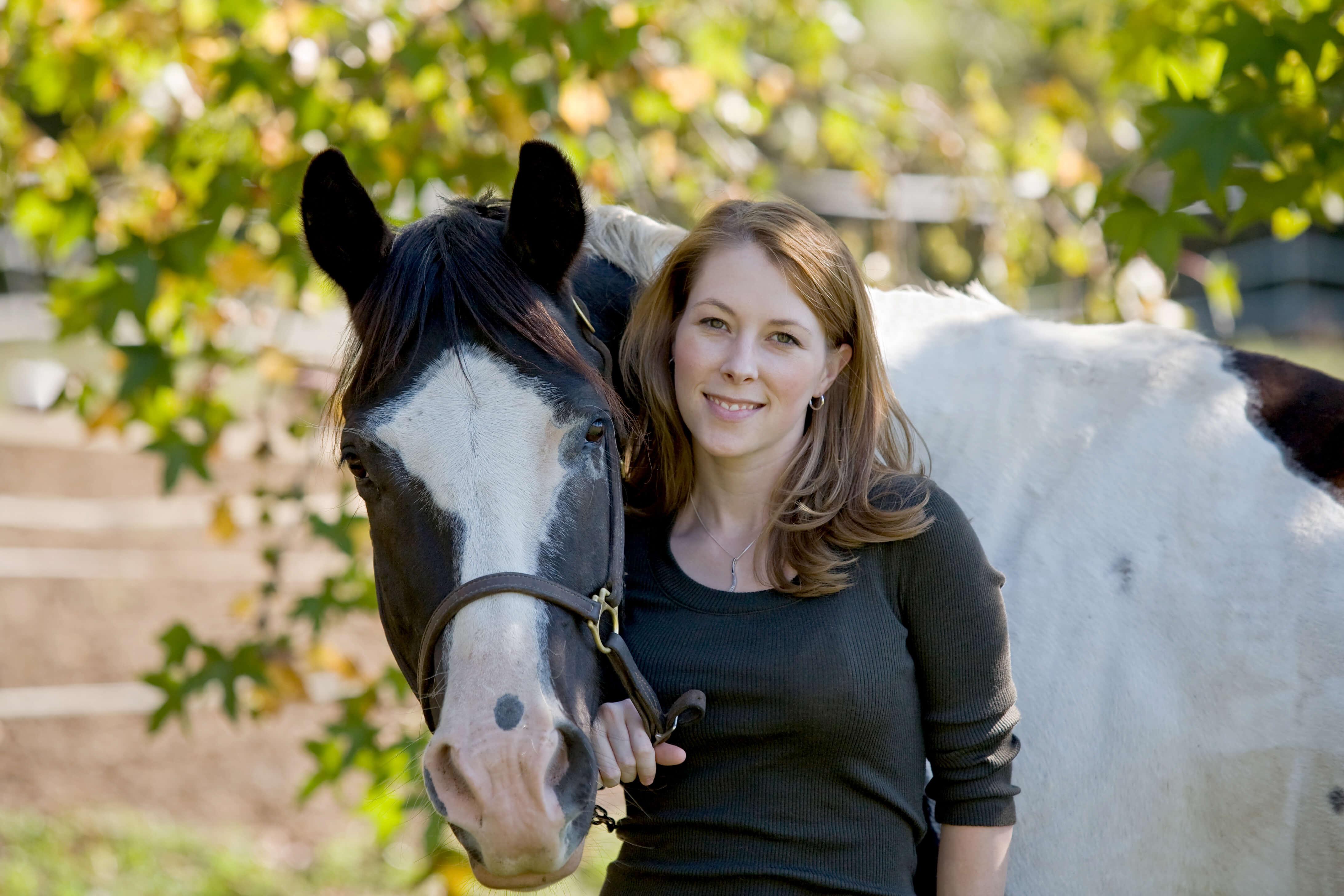 Horse & Livestock Cooling Spray