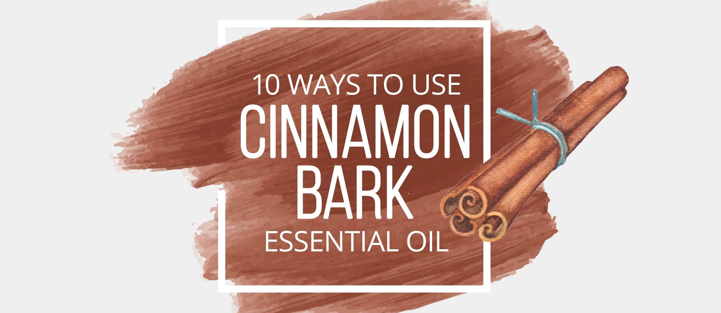 10 Ways to Use Cinnamon Bark - Lindsey Elmore