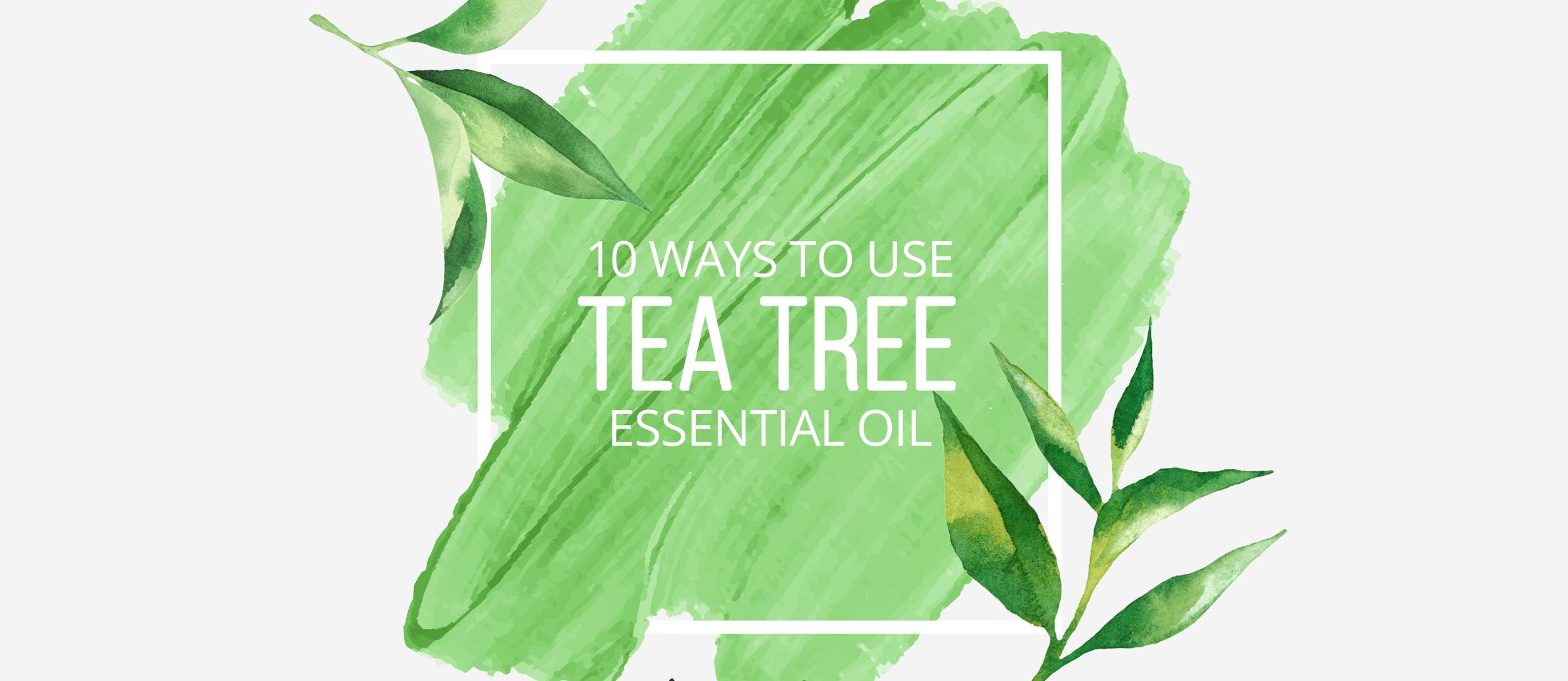 10 Ways to Use Tea Tree Essential Oil - Lindsey Elmore