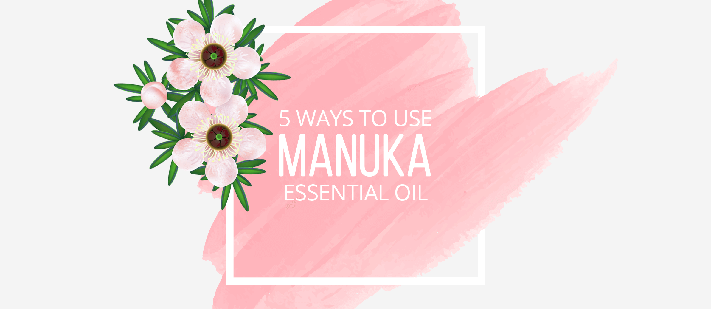 5 Ways to Use Manuka Essential Oil
