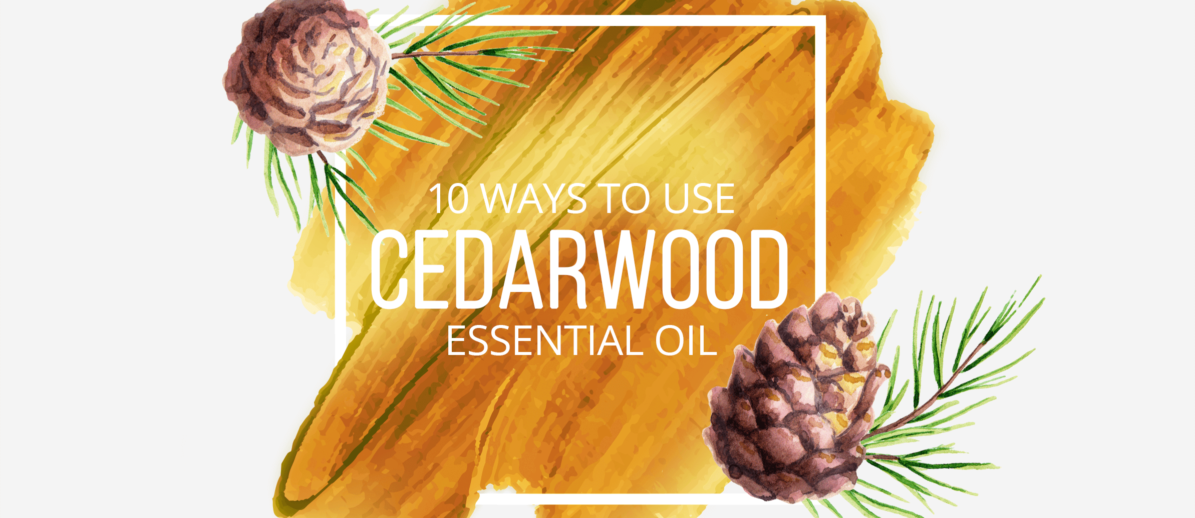 10 Ways to Use Cedarwood Essential Oil
