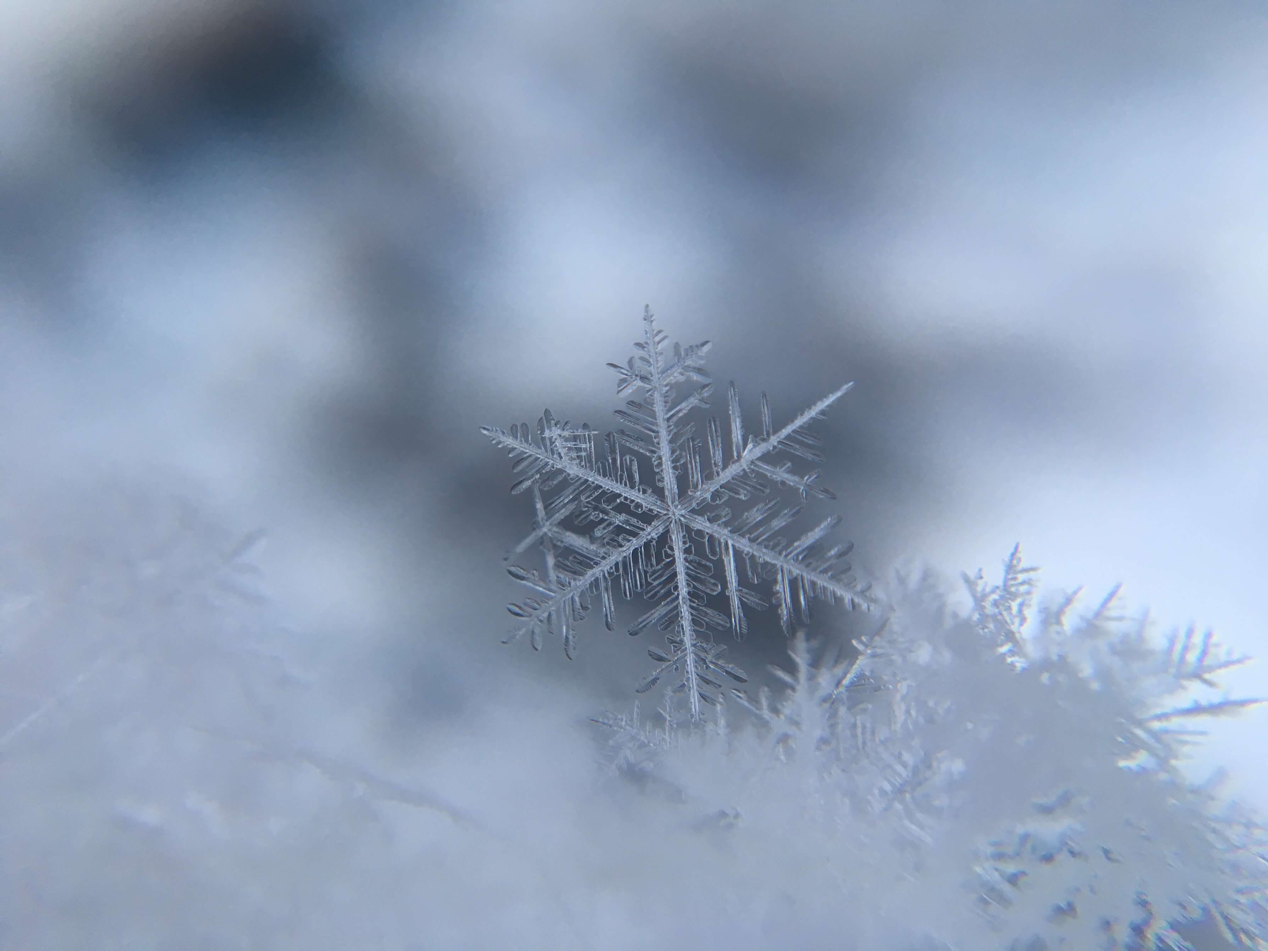 Moisturizing Winter Salve