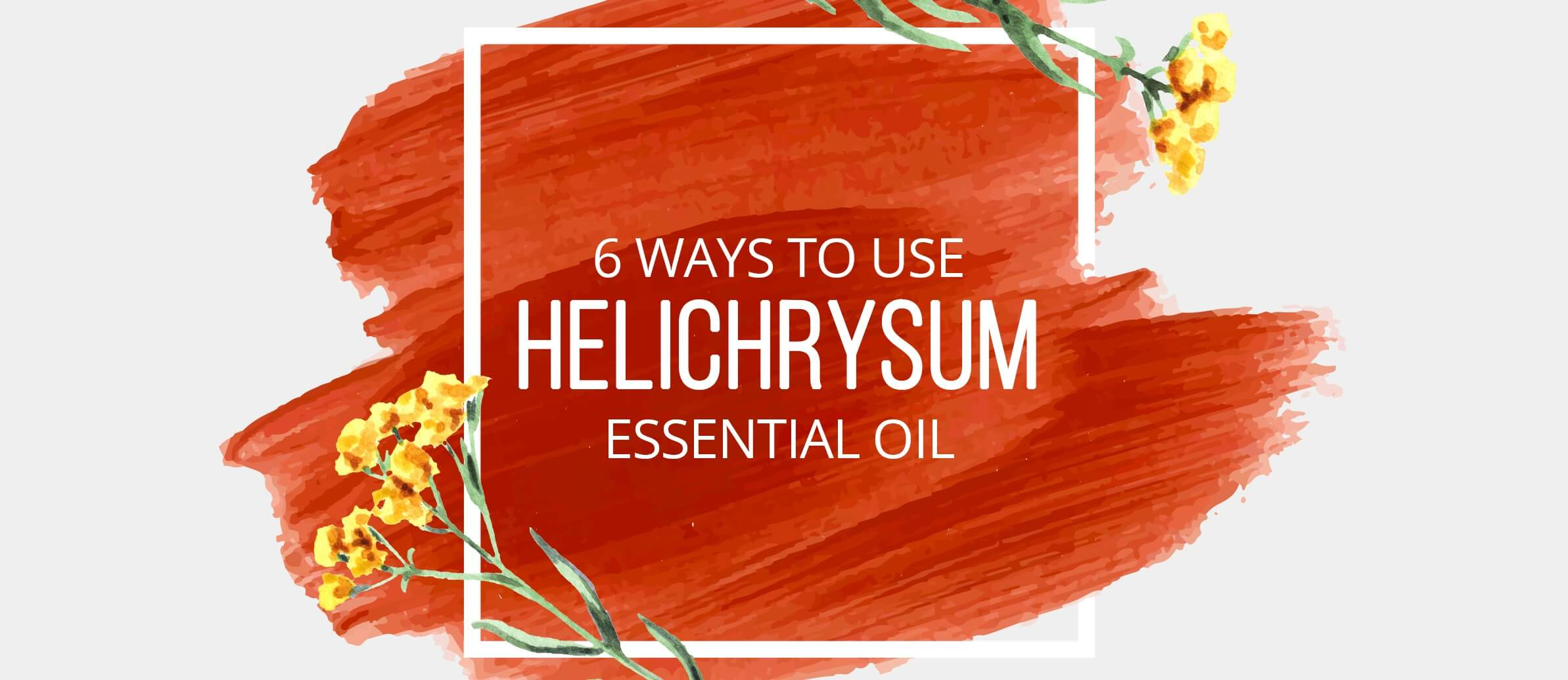 6 Ways to Use Helichrysum Essential Oil - Lindsey Elmore