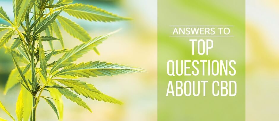 Answers to Top Questions About CBD